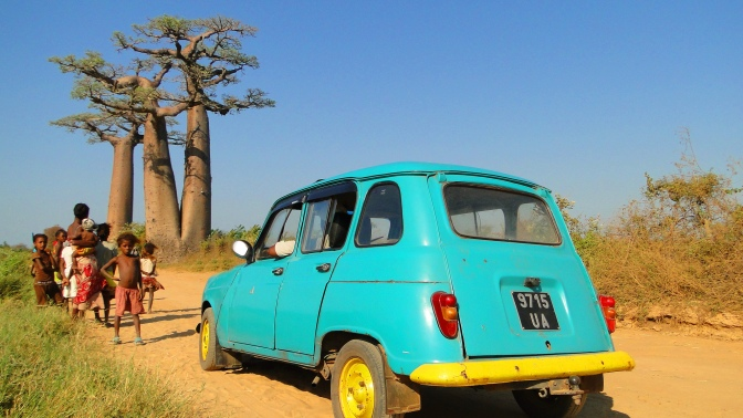 L'allée des Baobabs.