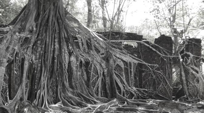 Les iles Andamans.