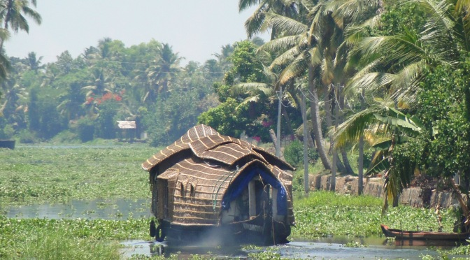 Les backwaters du Kerala.